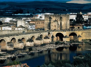 552417e1f943534e168a5e05_4-cordoba-bridge-dea-c-sappa-getty