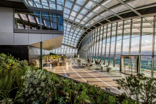 Rhubarb at Sky Garden - High Resolution08