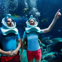 marine_and_waterpark_marine_animal_adventures_24_09_2014_9532ext
