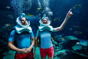 marine_and_waterpark_marine_animal_adventures_24_09_2014_9532ext
