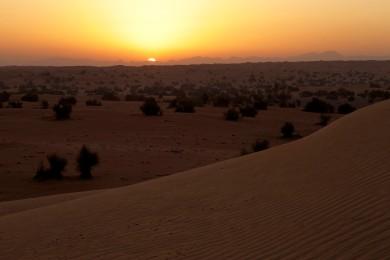 lux3081ed-175382-Exterior - Desert