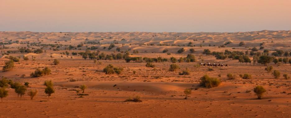 lux3081wn-100217-Exterior - desert view - Copy - Copy - Copy